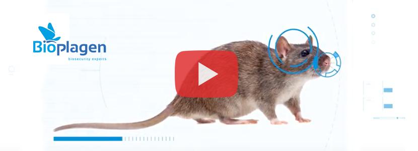 Bioplagen-roedores.png