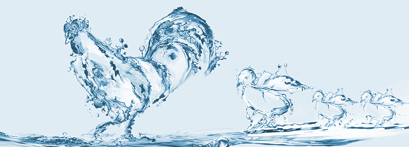 Agua-avicolas.png