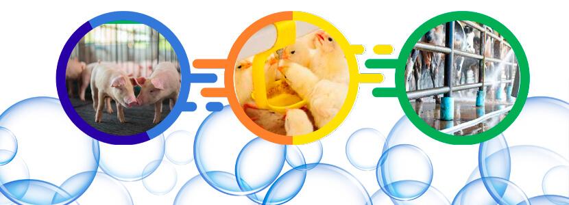 AQUAGAN-Bioseguridad.jpg