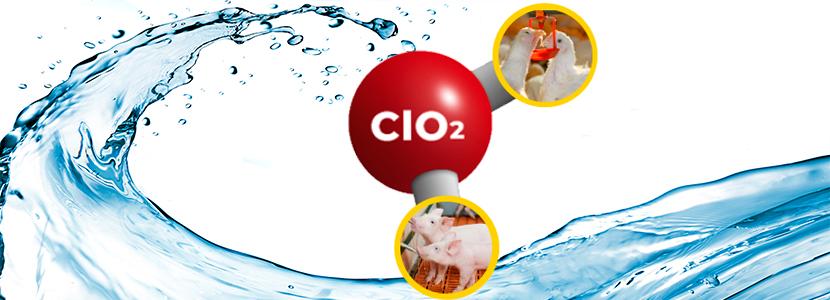 Higiene-Agua-ClO2.jpg